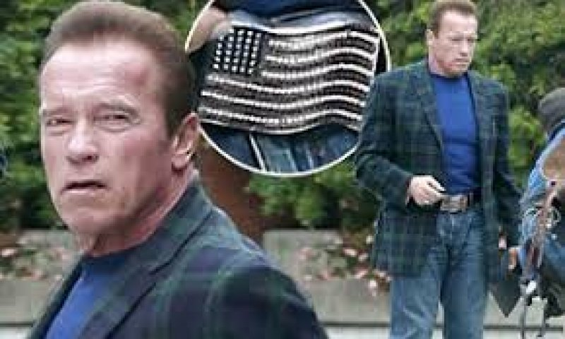 Arnold Schwarzenegger delivers a message