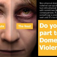 Overview of Intimate Partner Violence [aka domestic violence)