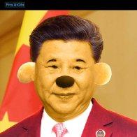 Xi the Pooh