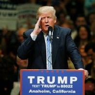 Fox ' Britt Hume : Trump Has Mental Problems