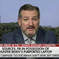 Ted Cruz: Joe Biden's Laptop Non-Denial Means He's Corrupt