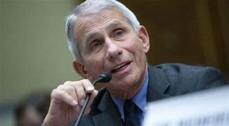Dr Fauci on the hot seat