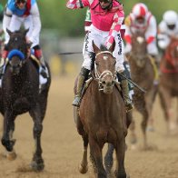 Rombauer wins Preakness Stakes