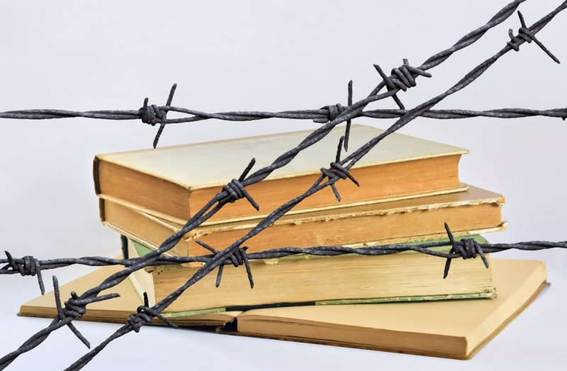 The Right's Snowflakes Are Banning Books