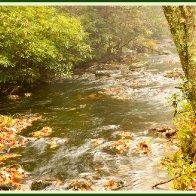 NT_autumnmudrun8.jpg