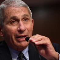 Anthony Fauci calls 200,000 pandemic death toll 'sobering, and in some respects, stunning'