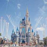 6 Absolutely Genius Reasons Why There Are No Mosquitoes at Disney World