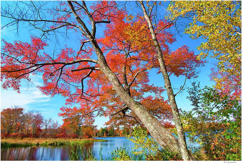 Gettin' Close to Autumn ~ Creative Arts Three-Day Weekend