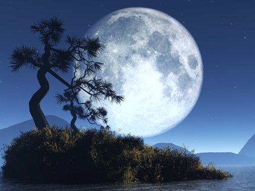 Moonchild63