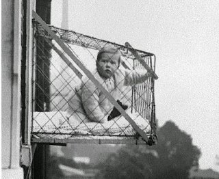 baby cage apartment window.jpg