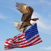 A Great 4th of July to all !