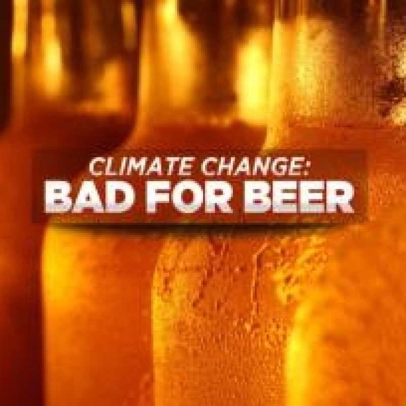 The Scientists Trying to Save Beer from Climate Change