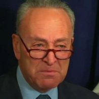 Sen. Chuck Schumer and Dems Will Oppose Any Law Stopping Child Separation At Border
