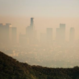 California Strikes Back Against the Trump Administration's Auto Pollution Rollback