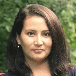 She Was a Refugee From Afghanistan. She May Soon Enter the New Hampshire Legislature.