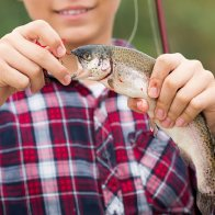 Why catch and release is tough on fish