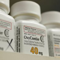 Purdue's secret OxyContin papers should be released, appeals court rules