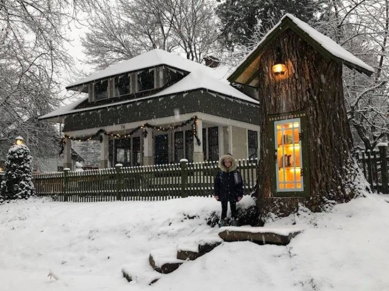 Woman Turns The 110-Year-Old Tree Stump In Her Yard Into A Magical Miniature Free Library