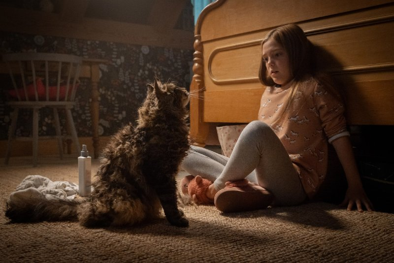 'Pet Sematary' is best when it explores the destructiveness of male fragility, not zombies