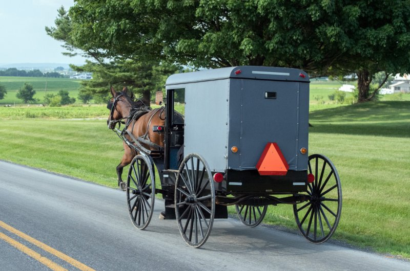 Two Amish kids in horse-drawn buggy killed by drunk driver: cops