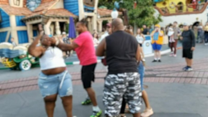 Feuding family booted from Disneyland following brutal fight caught on film