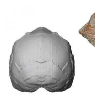Greek find called earliest sign of our species out of Africa