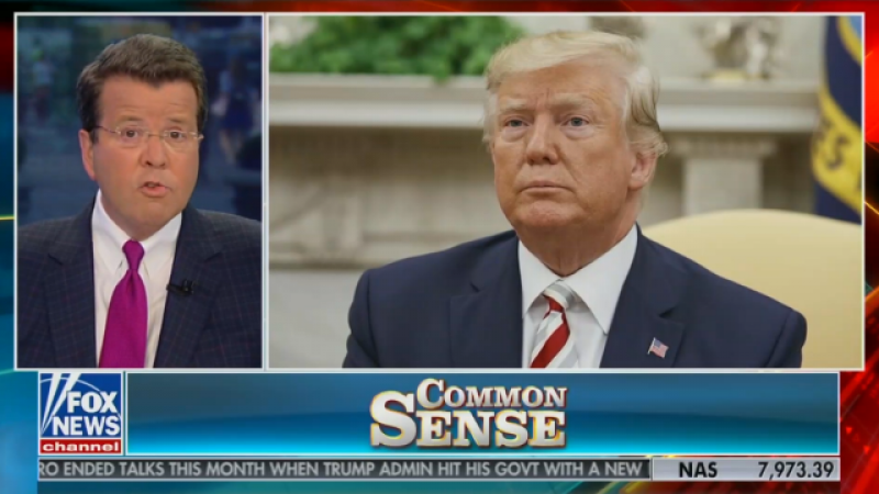 Fox News's Neil Cavuto calls out Trump on his own fake news