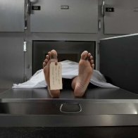 Human bodies keep moving for more than a year after death, researcher finds