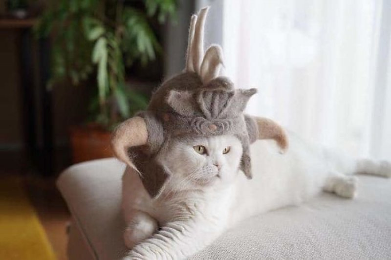 This Japanese Artist Creates Hats For Cats Made From Their Own Hair