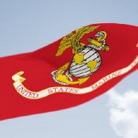 Happy Birthday U.S. Marine Corps.