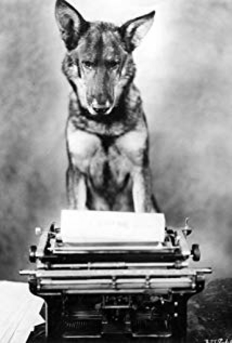 Rin Tin Tin (1918–1932) Actor