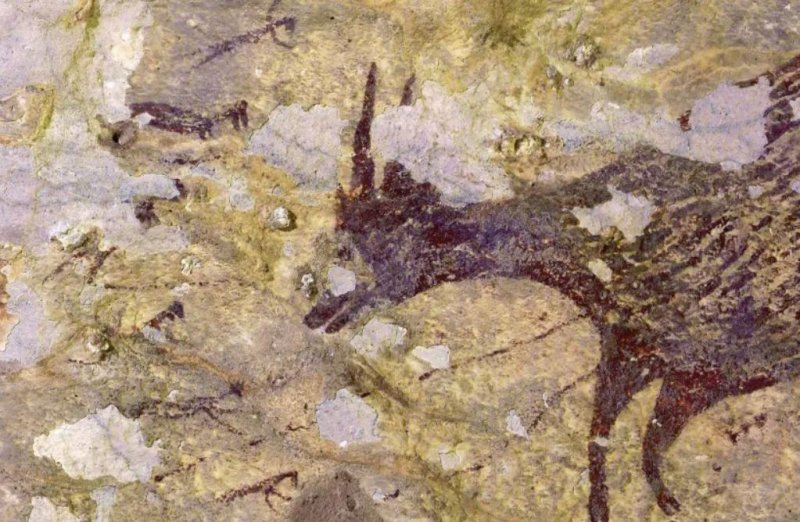 44,000 year old cave painting thought to be world's oldest story