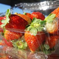 Gaza exports first ever shipment of strawberries to England