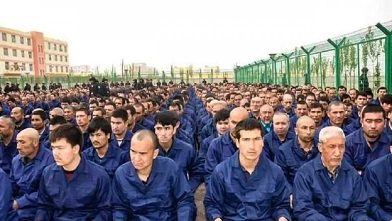 FIRSTHAND ACCOUNTS FROM XINJIANG CAMPS