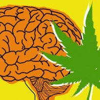 Scientists discover the reason why anxious people smoke marijuana