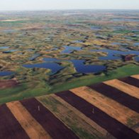 Trump Eases Pollution Controls On Streams And Wetlands