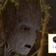 Groot In Hot Water After Recent 'I Am Groot' Comments
