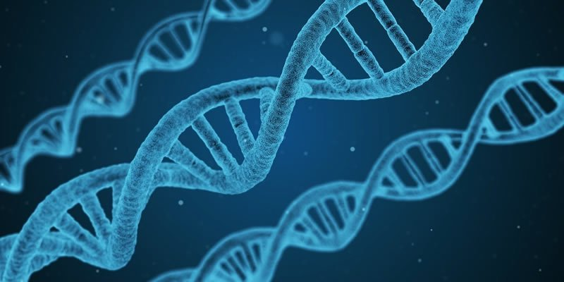 DNA may hold the key to protecting populations from COVID-19 - Neuroscience News