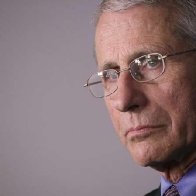 Coronavirus testing: Anthony Fauci says task force 'seriously considering' new strategy