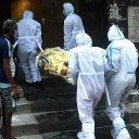 Key model predicts 400,000 coronavirus deaths in US by January