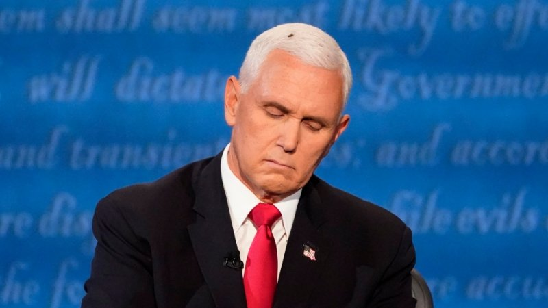 A fly on Mike Pence's head steals the show at the vice-presidential debate