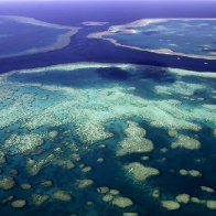 Coral reef taller than the Empire State Building discovered in Australia's Great Barrier Reef