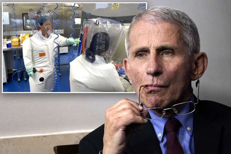 Fauci facing GOP calls for resignation amid Wuhan lab controversy