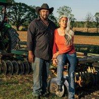Federal judge halts federal aid program for minority farmers