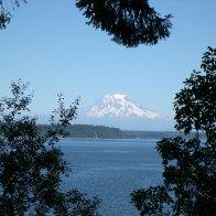 A view of Mt. Rainier in Wa. St.