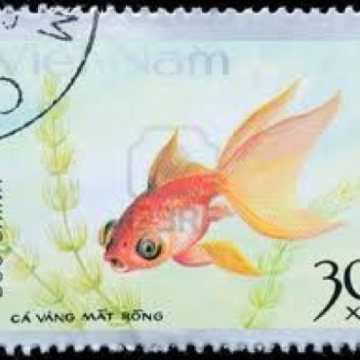 stamp-fish-goldfish