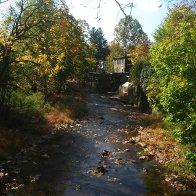 stream-sunny-day-IMG_4945