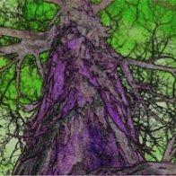 tree-of-life-small-matrix