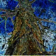 tree-of-life-small-edges