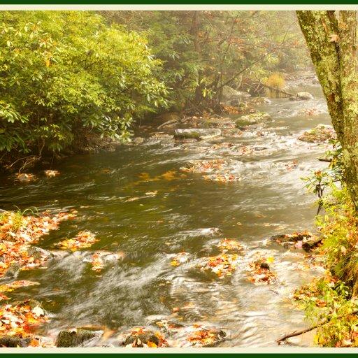 NT_autumnmudrun8